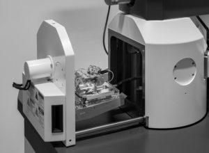 GLU Labor - Rasterelektronenmikroskopie mit EVO 10